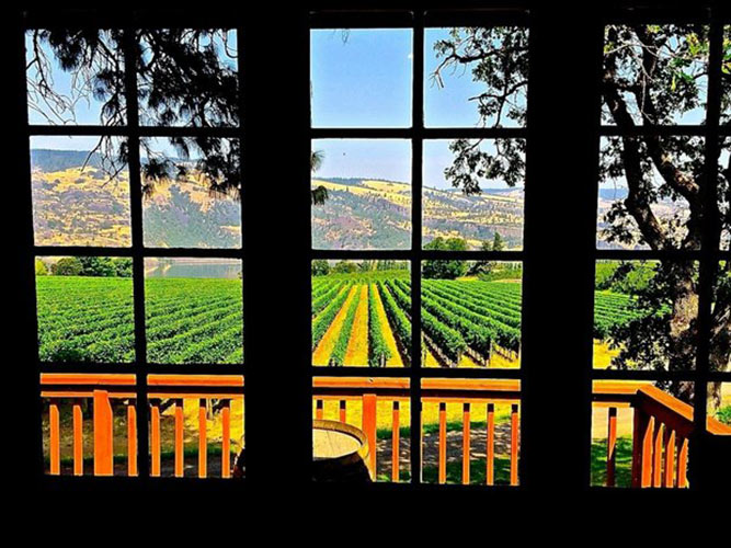 Garnier Vineyards tasting room view