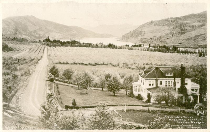 Mayerdale Postcard Approx 1920